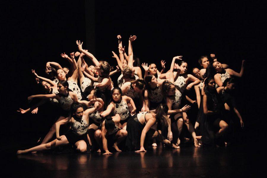 A New Perspective VAPA dance show