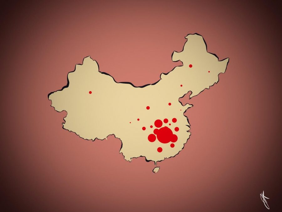 The Chinese district Wuhan is hit the hardest by the Coronavirus.
