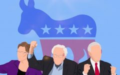Reviewing the Top Democratic Candidates