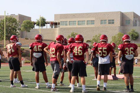 Football players back facing the camera